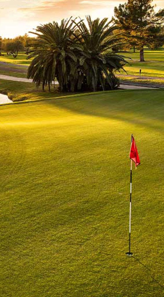 golf-blog